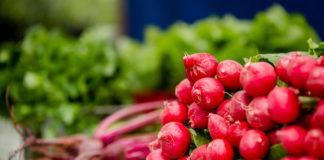 Jak wybrać dobre skrzynki na warzywa?